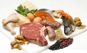 Weight-losing-protein-foods
