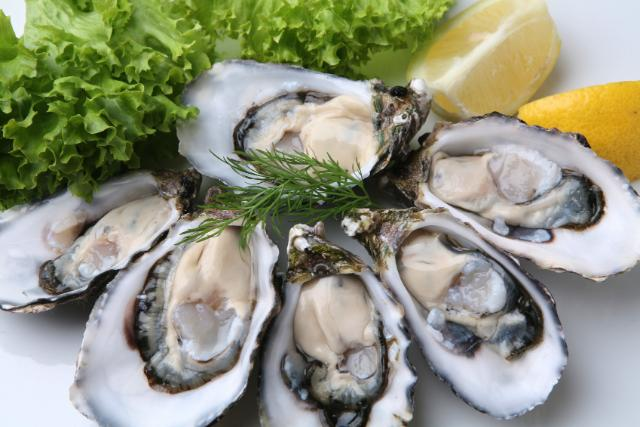 Oysters weight loss